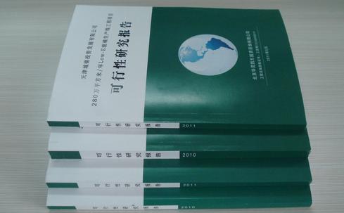项目可行性报告